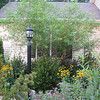 2006 Bluebird Cove Garden : The garden wonders in our own backyard which is a Certified Backyard Habitat with NWF.
