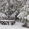 Front Yard Setting While Snowing Rapidly - Butterfly Bench  2-19-12