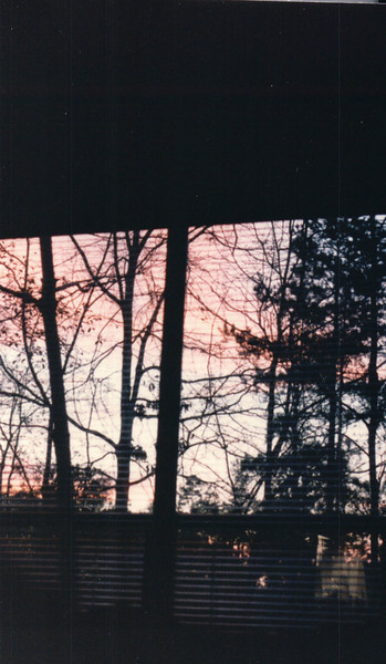 Sunrise at Master Bedroom Window  2-2-90