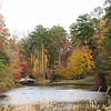 Lake With Bridge - Sarah P. Duke Garden