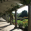 Richmond, VA - Maymont Estate : Richmond, VA  - 100 Acres of Wildlife, Gardens and Trees  8-9-08 and 10-22-08